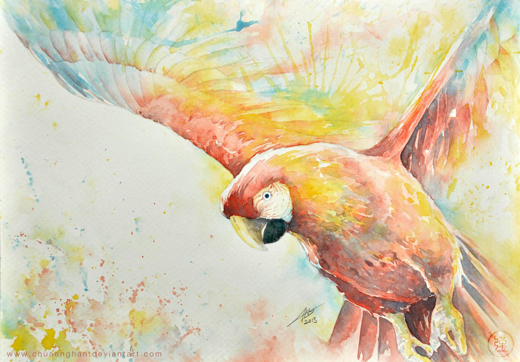 Parrot Water Colour by chuaenghan