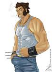 X-Man - Wolverine