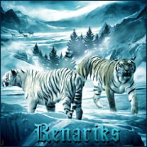 RenariksLV's Profile Picture