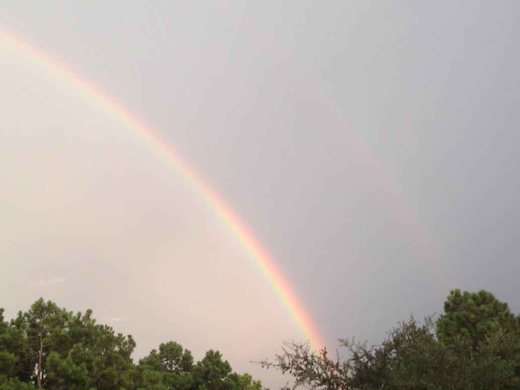 Rainbow!!! by ThePurpleHaro