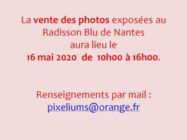 Vente nantes Radisson Blu