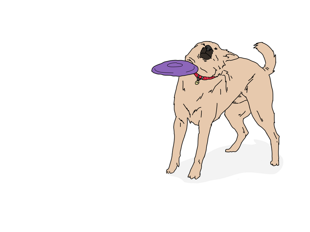 dog_getting_hit_by_a_frisbee_meme_by_jxulia db3hmcc dog getting hit by a frisbee meme by jxulia on deviantart