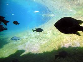 Underwater by JannaMarieisaTragedy