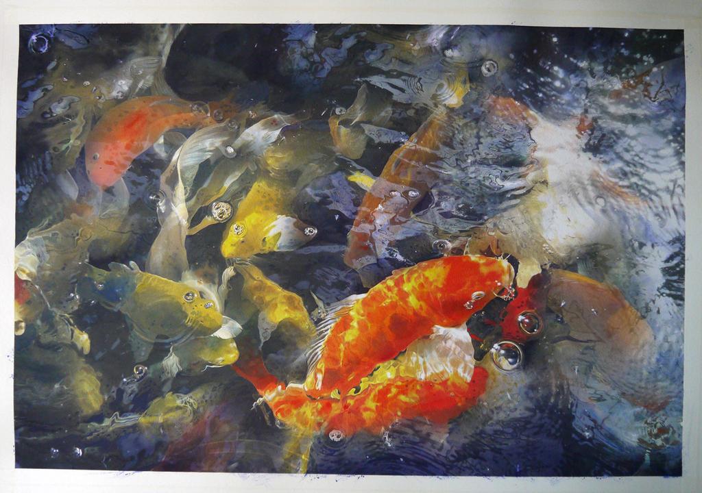 Carp Fish at my house by a-thammasak