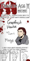Dragon Age II Meme+SPOILERS
