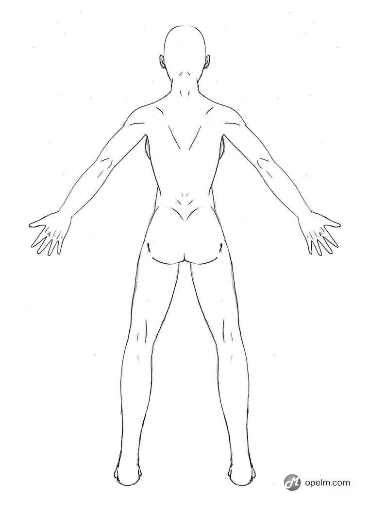 Female Anatomy Drawing Model Back By Gourmandhast On Deviantart