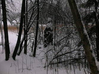 Old man in the thicket by Oravamangusti