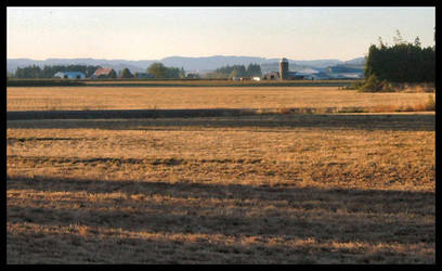Panorama_OregonCountry by pixipatrin