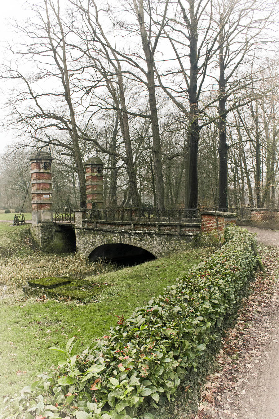 Bridge by the-awaken