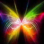 . Bright Butterfly .