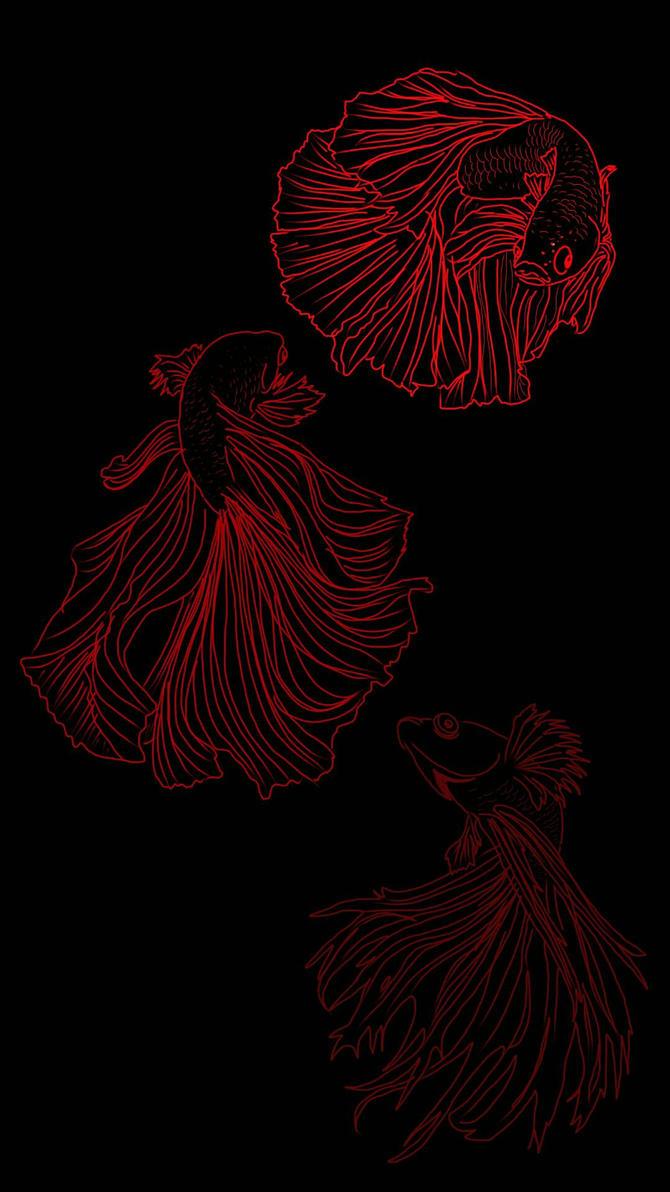 Red Betta  by chaitanyak
