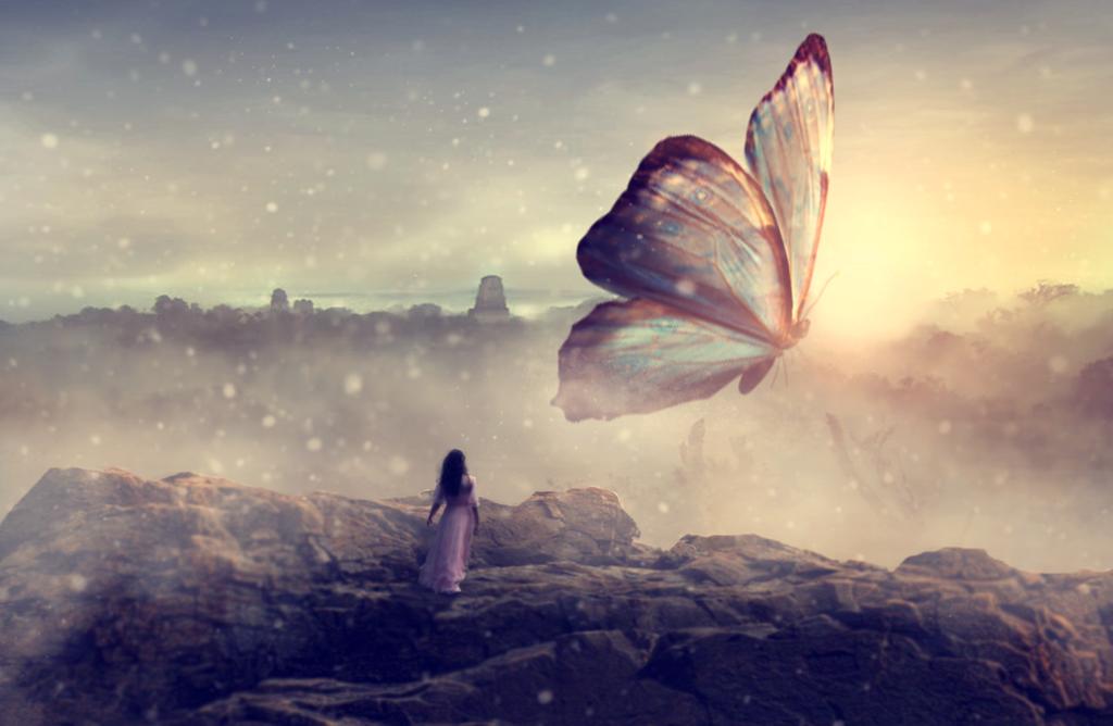 Butterfly by lwlyb159
