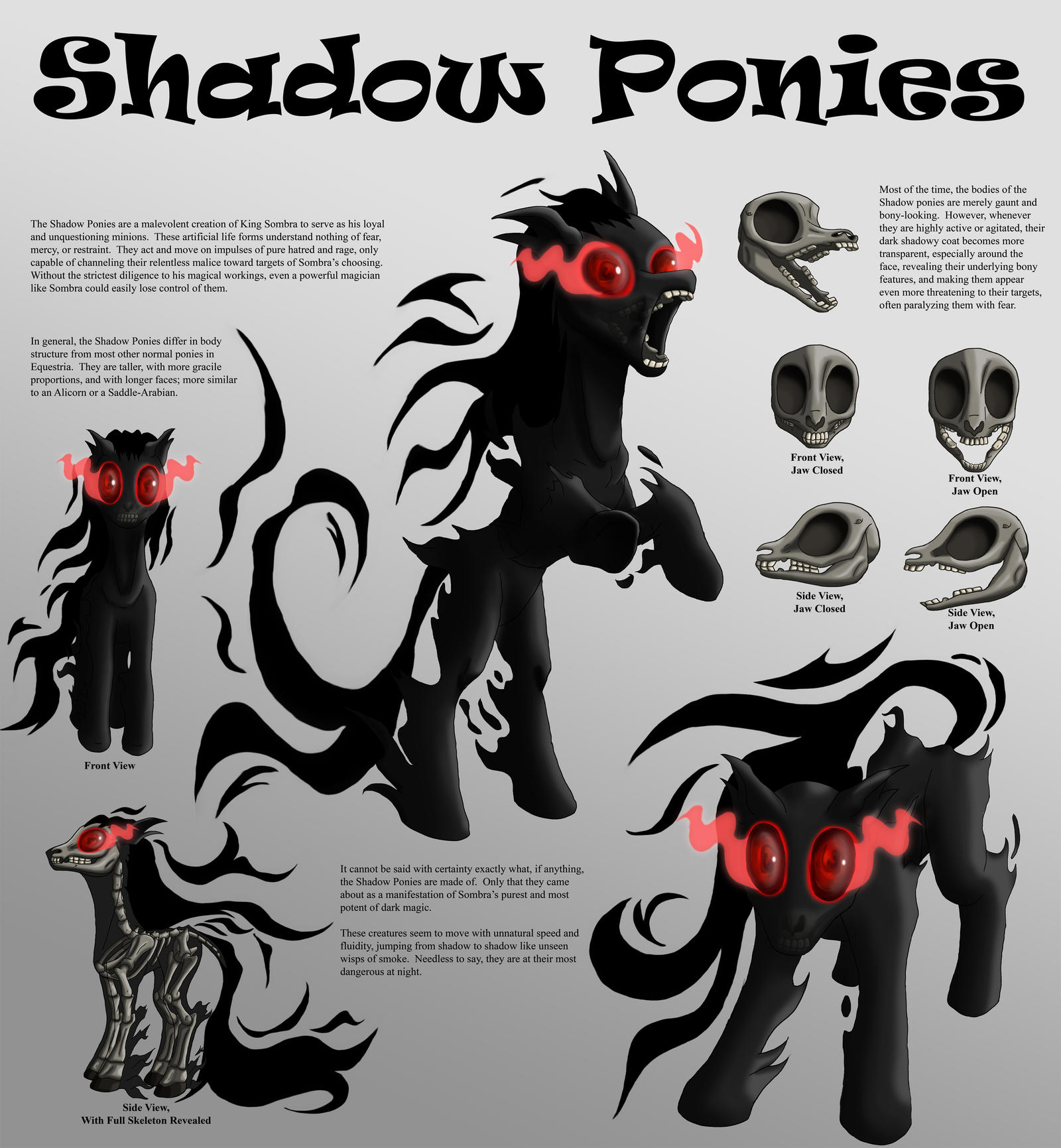 Shadow Ponies Character Sheet by Starbat on DeviantArt