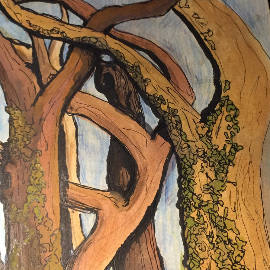 Dancing trees by Free-raccoon-eyes
