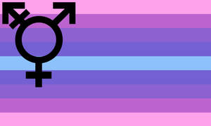 Transsexual flag by SilenceTheFox