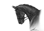 Grayscale Dressage PNG