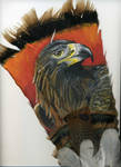 Golden Eagle on Feather