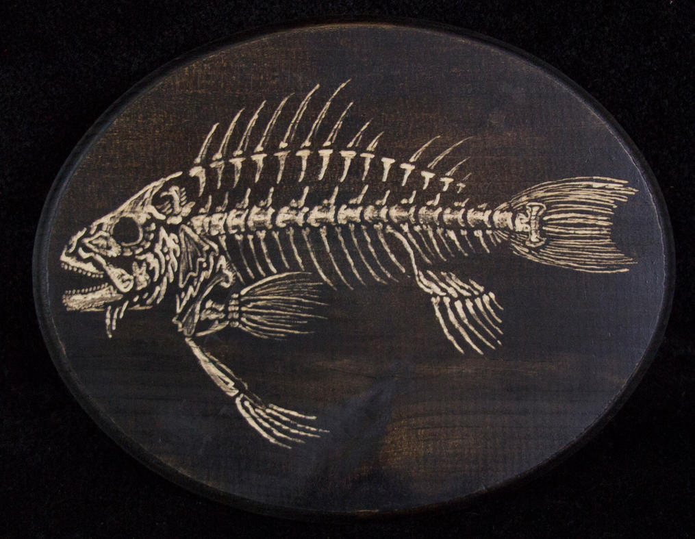 Fish Skeleton #1 by ManifestiV