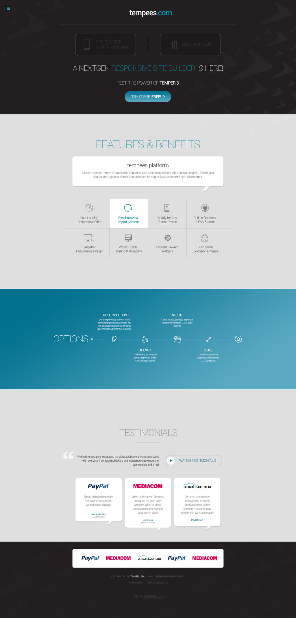 Dynamic Website FREE PSD template by tempeescom