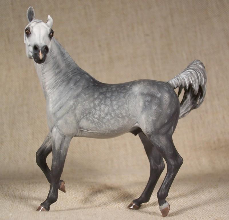 Dapple Grey Arabian Stallion by ymagier