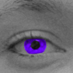 Purple-ViviSan's Profile Picture