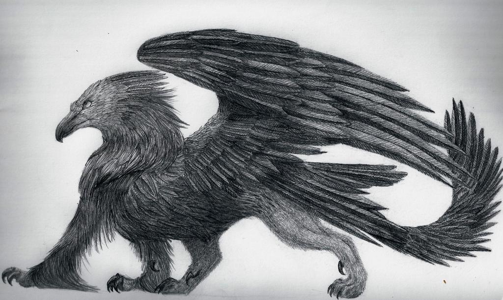 Griffon by foxspitt