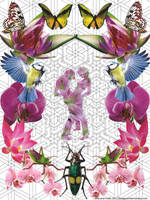 Love and Math by bluespectralmonkey