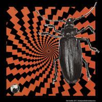 The Beetle by bluespectralmonkey