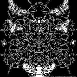 bugs by bluespectralmonkey