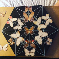 hexafly  by bluespectralmonkey
