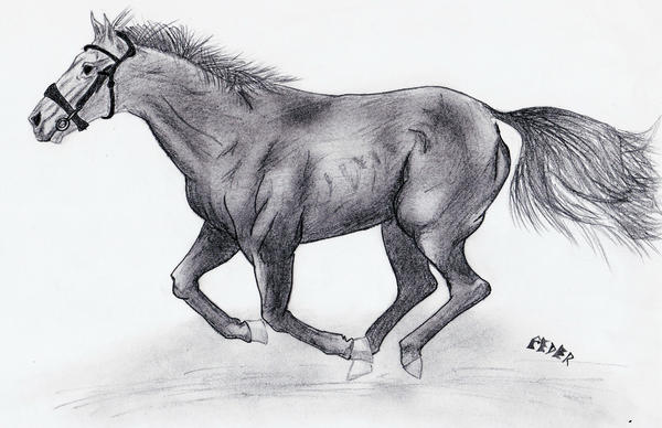 Running horse by ssinclair92 on DeviantArt