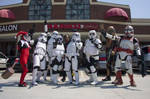 Fun with the 501st by LittleHarleyQ