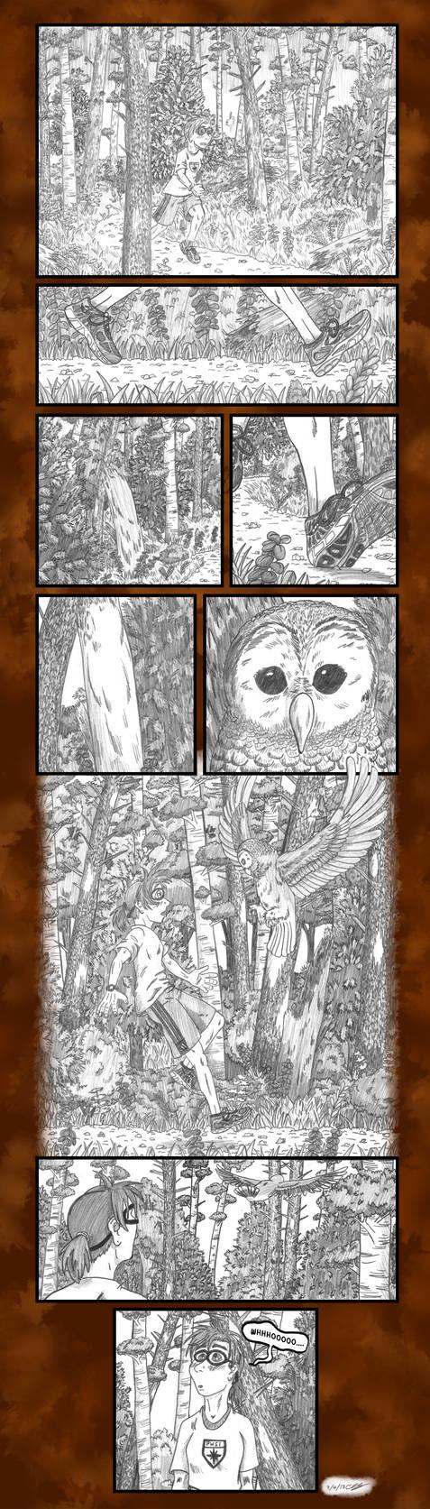 Owl Training