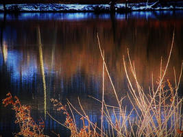 River reflection by Ambruno