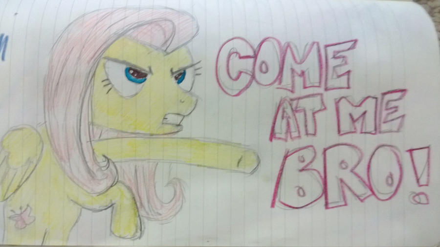 COME AT ME BRO- FLUTTERSHY PONY STYLE by Shutter-To-The-Shock