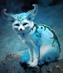 Fennec Fox Spirit
