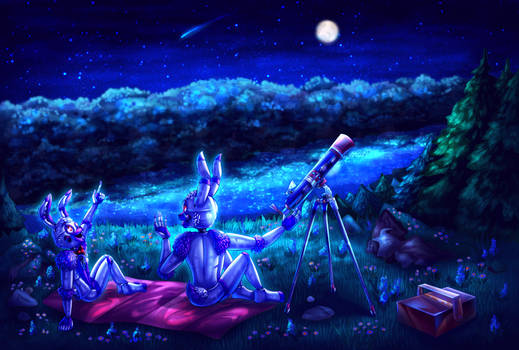Studying the night sky  *Commission*