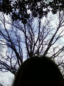 CausticFlower's Profile Picture