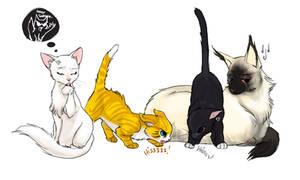 Naruto Team 7 - kitties