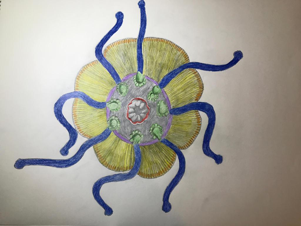 Medusa by ariya-sacca