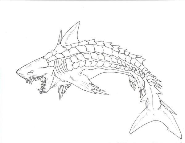 Shark hybrid drawing - photo#5