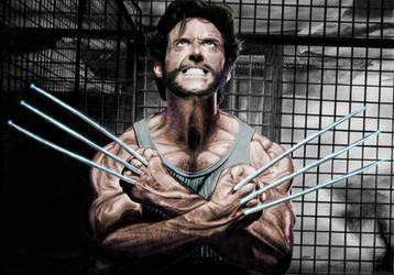 Wolverine by MrTonyStark