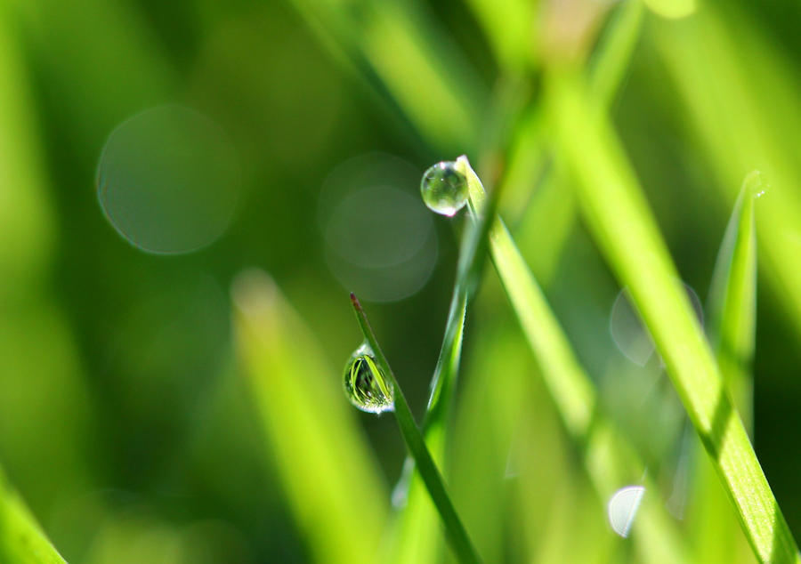Droplet by Neutronstr