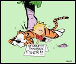 Beware of Tiger