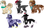 60 point canine adopts! -CLOSED-