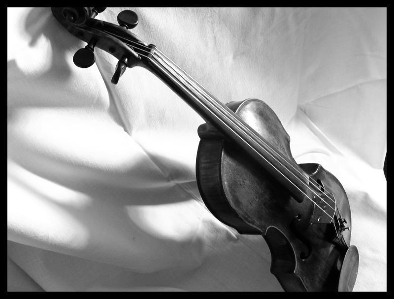 violin fixioN II by SENIL07