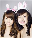 Bunny Headbands