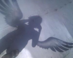 chilmarkgryphon's Profile Picture
