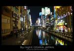 Osaka by night -5-