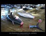 The fish market of Kii Katsura